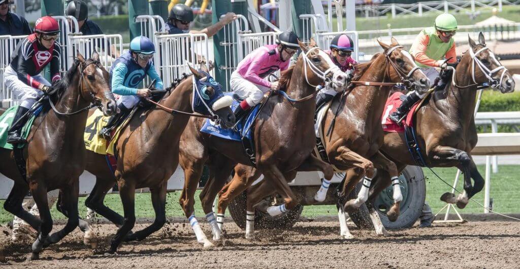 Kentucky Derby Horse Race Betting