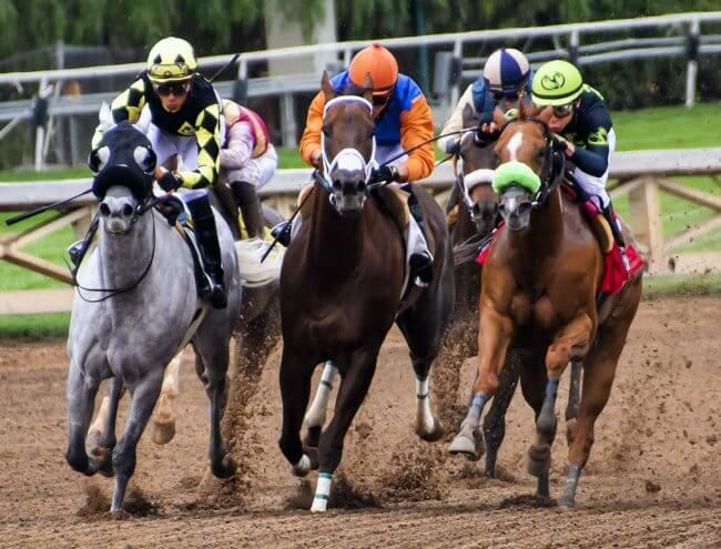 Kentucky Derby Betting Guide 2021
